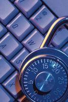 Tipos de Hackers éticos