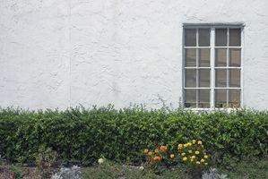 Cómo reemplazar Windows en una casa de estuco 1