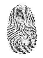 ¿Qué es un escáner en vivo?